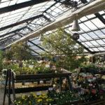 植物園を見学